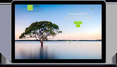 brain-serenity